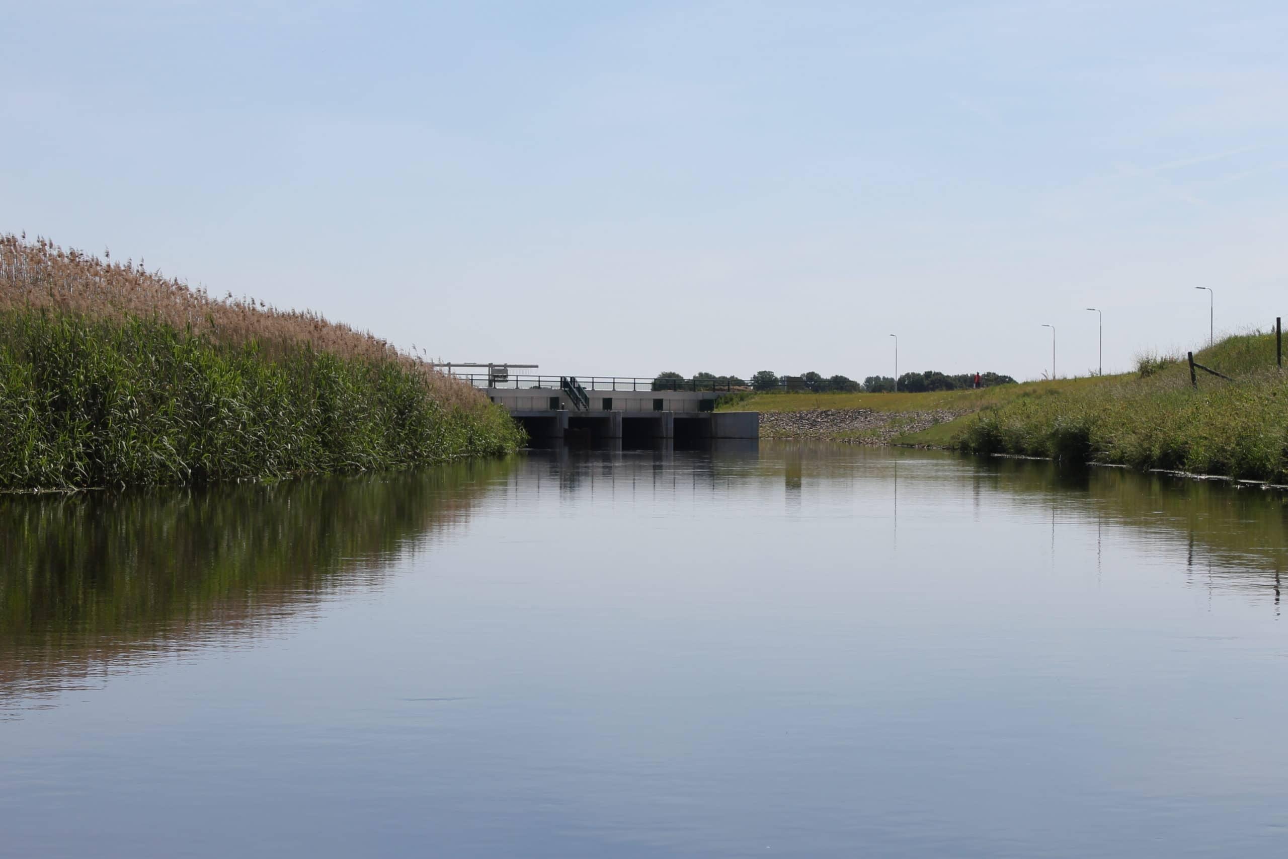 varen in de natuur van Den Bosch